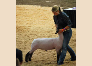 2012-reserve-champion-crossbred-wisconsin-state-fair-leah-green
