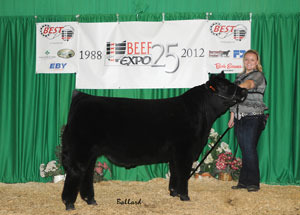 2012-reserve-champion-overall-maine-anjou-steer-beef-expo-breanne-gabriel
