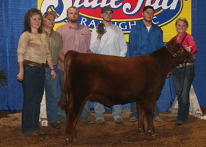 2012-reserve-champion-red-angus-heifer-north-caolina-state-fair-michala-j-muse
