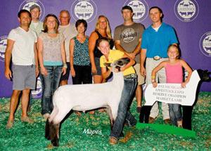 2012-reserve-grand-champion-market-lamb-michigan-livestock-expo-madalyn-stewart