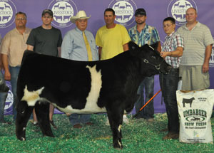 2012-reserve-grand-champion-steer-michigan-livestock-expo-nick-stutzman