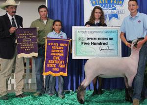 2012-reserve-supreme-ewe-champion-hampshire-ewe-kentucky-state-fair-stefan-fink