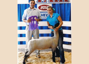 2012-supreme-champion-commercial-ewe-cumberland-county-regional-fair-luci-allen