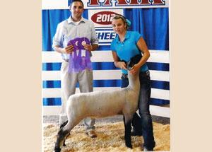 2012-supreme-champion-commercial-ewe-cumberland-county-regional-fair-luci-allen