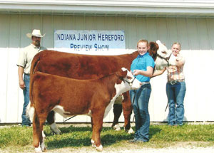 2012-supreme-champion-cow-calf-indiana-junior-polled-hereford-show-stephanie-camden