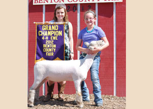 2012-supreme-champion-ewe-benton-county-fair-carson-kretzmeier