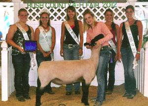 2012-supreme-champion-ewe-rush-county-fair-alexis-carmony