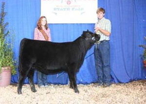 2012-supreme-champion-heifer-calf-tennessee-state-fair-peyton-williams