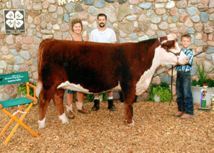2012-supreme-champion-heifer-marshall-county-fair-chase-laudeman