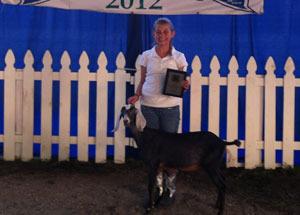 2012-supreme-champion-junior-dairy-doe-morgan-county-fair-alyssa-somerville