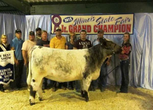 2012-supreme-champion-shorthorn-5th-overall-female-illinois-state-fair-maddey-tebbe