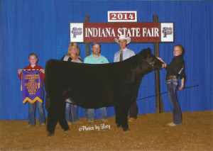14-Reserve Grand Champion Heifer-Indiana State Fair-Auburn Harvey