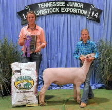 14-Champion Southdown Market Lamb-Tennessee State 4H Livestock Expo-Josie McCall