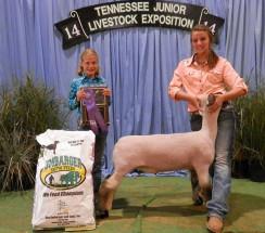 14-Grand Champion AOB Market Lamb-Tennessee 4H Livestock Expo-Luci Allen