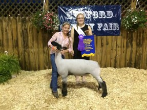 14-Grand-Champion—Bedford-County-Jr-Market-Lamb-Show-Syeira-Waltemire