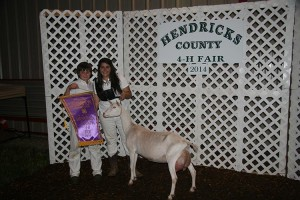 14-Grand-Champion-Dairy-Doe-Hendricks-County-4H-Fair-Grace-Potts
