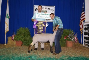 14-Grand-Champion-Market-Lamb-Davies-County-Shom-Berry