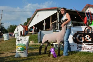 14-Grand-Champion-Market-Lamb-Knox-county-Jr-Fair-Hannah-Moreland