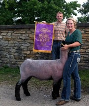 14-Supreme-Ewe-Henry-County-4H-Fair-Kathryn-Pierce