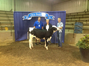 14-2nd-Place,-Class-6—Ohio-State-Fair-Feeder-Show-Hunter-Adam