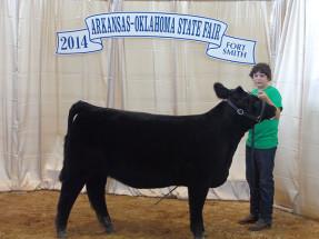 14-Breed-Champion-Simmental-Solution-Arkansas-Oklahoma-State-Fair-Kaden-Bullard