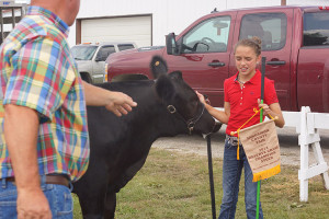 14-Champion-Angus-Sangamon-County-Fair-Abigail-Sheley