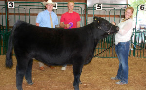 14-Champion-Breeding-Heifer-Vanderburgh-County-Fair-Barry-Wilson