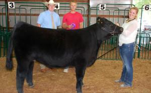 14-Champion-Breeding-Heifer-Vanderburgh-County-Fair-Barry-Wilson