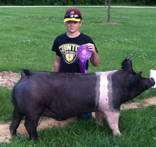 14-Champion-Hamp-Barrow-&-Reserve-Grand-Champion-Overall—Christian-County-Fair-Drew-Stacey
