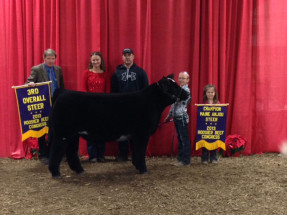 14-Champion-Maine-Steer-and-3rd-Overall—Hoosier-Beef-Congress–Harper-Henney