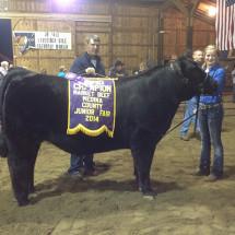 14-Champion-Market-Steer-Medina-County-Fair-Shelby-Moucha