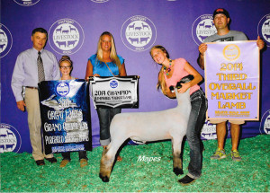 14-Champion-Michigan-Purebred-Lamn-Champion-Hampshire-and-3rd-Overall-Michigan-Livestock-Expo-Maddy-Stewart