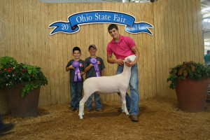 14-Champion-Montadale—Ohio-State-Fair-Brock-Martin