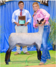 14-Champion-Natural-&-3rd-Overall—Tennessee-Jr-Sheep-Expo-Brooklyn-Ellis