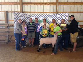 14-Champion-Overall-Market-Lamb-Cass-County-Fair-Madelin-Yuhas