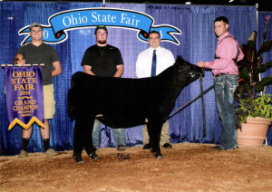 14-Champion-Prospect-Heifer-Ohio-State-Fair-Jared-Cluxton
