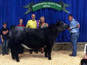 14-Champion-Shorthorn-Plus-Steer-Minnesota-State-Fair-Dylan-Miller