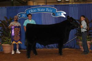 14-Champion-Shorthorn-Plus-Steer—Ohio-State-Fair-Nicholas-Bauer