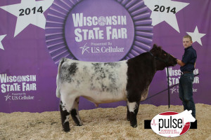 14-Champion-Shorthorn-Steer-and-4th-Overall—Wisconsin-State-Fair-Jack-henderson