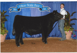 14-Division-5-Crossbred-Champion-Ohio-State-fair-Curtis-Harsh