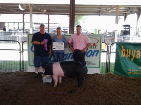 14-Grand-Champio-Hampshire-Gilt-DuQuoin-State-Fair-Michelle-Noggle
