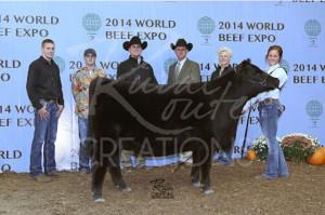 14-Grand-Champion-Angus-Heifer-World-Beef-Expo-Taylor-Adcock