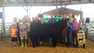 14-Grand-Champion-Born-and-Bred-Overall-St-Joseph-County-4H-Fair-Tate-Walmsely