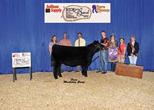 14-Grand-Champion-Bred-and-Owend-Maine-Anjou-Heifer-National-Jr-Maine-Anjour-Heifer-Show-Alec-Myers