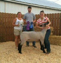 14-Grand-Champion-Breeding-Ewe-Clermont-County-Fair-Alexis-Faubion