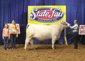 14-Grand-Champion-Charolais-Heifer-North-Carolina-State-Fair-Mattie-Harward