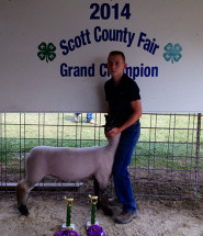 14-Grand-Champion-Commercial-Ewe-Scott-County-Fair-Blake-Clayton
