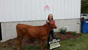14-Grand-Champion-Dairy-Beef-Feeder-Seneca-County-Fair-Paityn-Clouse