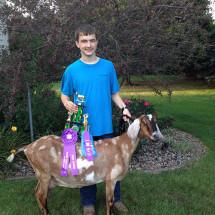 14-Grand-Champion-Dairy-Doe-McClean-County-Fair-Joshua-Jones