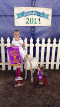 14-Grand-Champion-Dairy-Wether-Morgan-County-4-H-Fair-Jenna-Somerville
